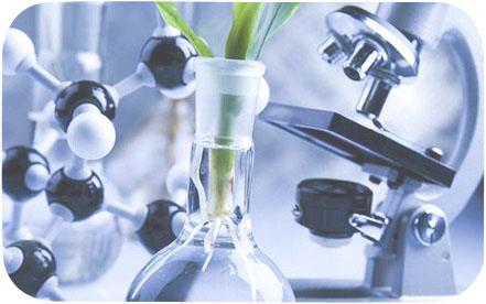 Fitonutrientes vegetales